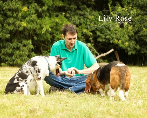 supervising-dogs-at-play
